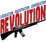 Legislation Registration Confiscation Revolution