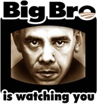 Big Bro is Watching