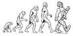 Clown Evolution