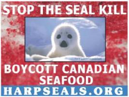 Stop the Seal Kill