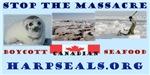 Stop the Massacre of Seals