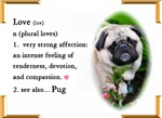 Love Is Pug Gifts