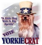 Yorkshire Terrier _ YORKIEcrat
