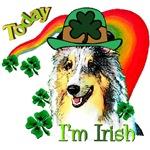 Saint Patricks Day Sheltie