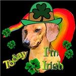 St. Patrick's Day Dachshund