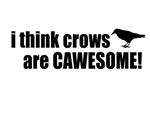Crows are CaWsome!