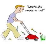 Looks Like Weeds