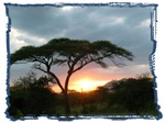 Tanzania by Mike Epler