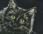 Whimsical Cat Calendars