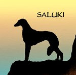 Saluki t-shirt & gift shop