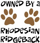 Owned By A Rhodesian Ridgeback