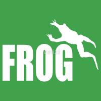 Funny frog shirts