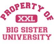 big sister u t-shirts