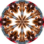 Dog Breed Kaleidoscopes and Designs