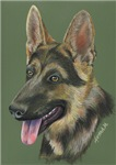 DOGS - THE GERMAN SHEPHERD