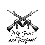 My Guns are Perfect