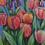 Mainly my tulips