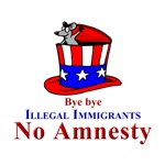 No Amnesty Hat Bye bye