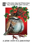 A Pear Tree in a Partridge Christmas cards.