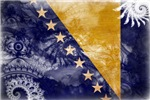 Bosnia and Herzegovina Flag