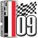 V FLAG 2009