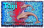 stop the slaughter of dolphins in taiji