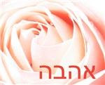 Hebrew Love Rose