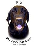 Kip the Service Dog