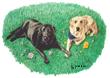 Forever Friends, Labrador Retrievers