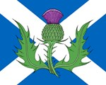 Scottish Thistle and Saltire