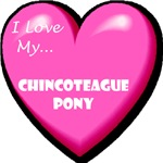 I Love My Chincoteague Pony