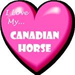 I Love My Canadian Horse