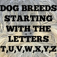 Dog Breed Gifts T - Z