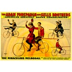 The Miraculous Melrosas