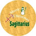 Sagittarius Christmas Gifts
