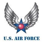 Air Force Wings