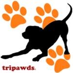 Trihound (Rear Leg)