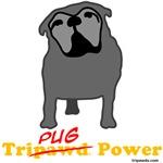 Tri-Pug Power (Maggie)