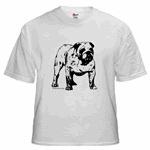 Black & White Bulldog