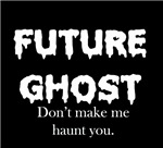 Ghost Hunter Haven