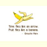 Time Flies - Goodies