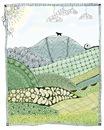 Labrador Mountain Doodle