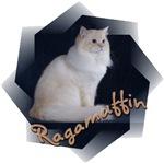 Ragamuffin (Truman)