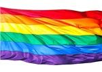 Rainbow Flag Clothing and Stuffed Animals