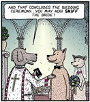 Sniff the Bride