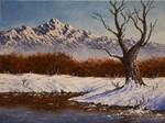 Winter landscape scene