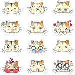 Kawaii Emoji Cat Pattern