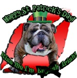 St.Patrick's Bulldog