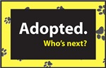 Adopted. Who's Next?