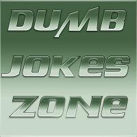 Dumb Jokes Zone